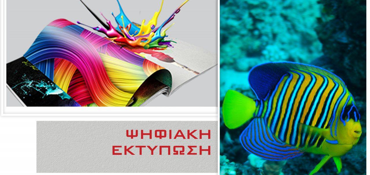 pshfiako_new_3